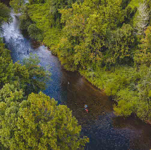 overhead view of a river